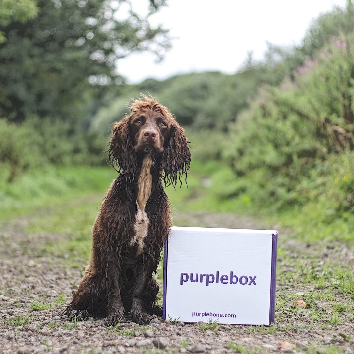 Purplebone Box