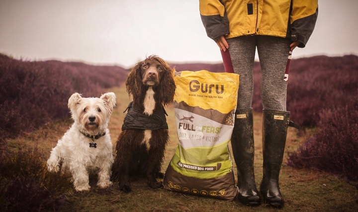 Guru Pet Food… A Year On