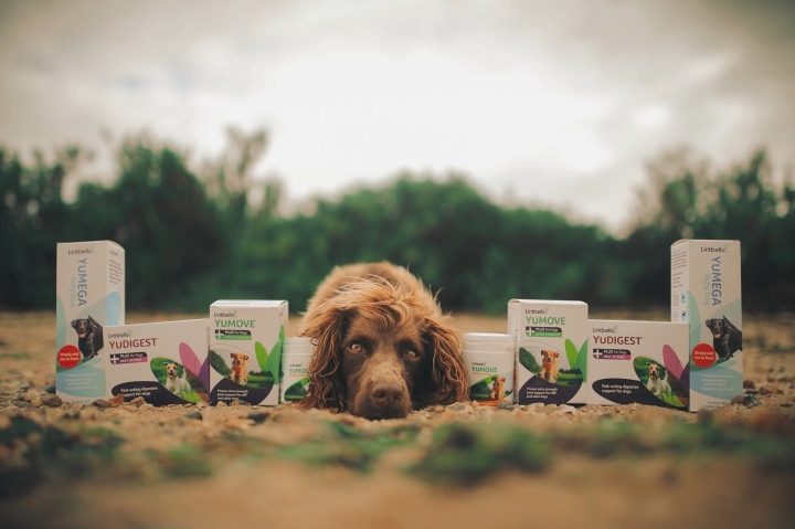 Lintbells Pet Supplements